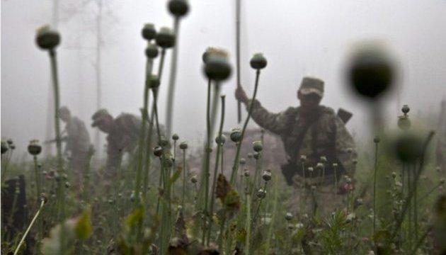 США готові допомогти Мексиці знищити плантації маку