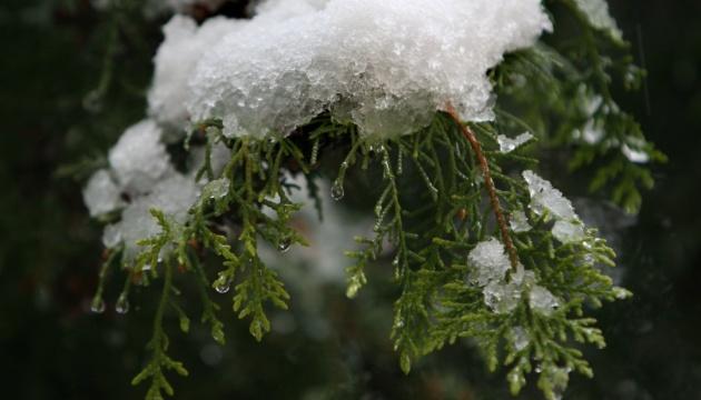 Синоптики розповіли, коли українцям чекати снігу
