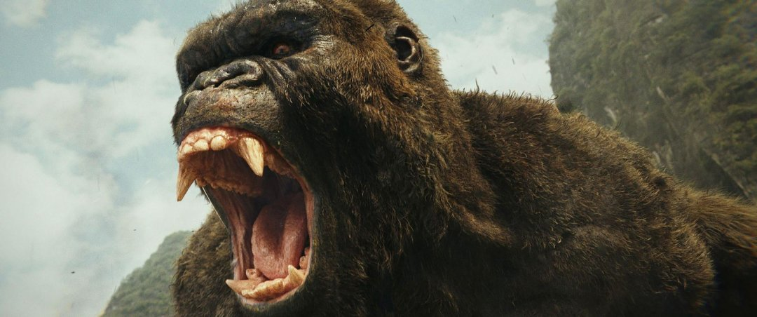 Велика горила – велика каса