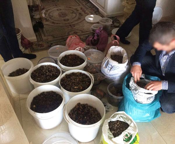 ВРивненской области правоохранители изъяли янтаря на2 млн. гривень