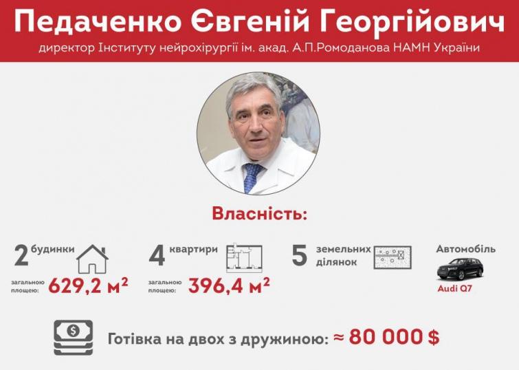 Головний лікар Інституту нейрохірургії Євгеній Педаченко задекларував разом з дружиною 5 земельних ділянок, 2 будинки та 2 квартири.