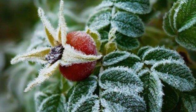 У вівторок в Україні до 5° морозу