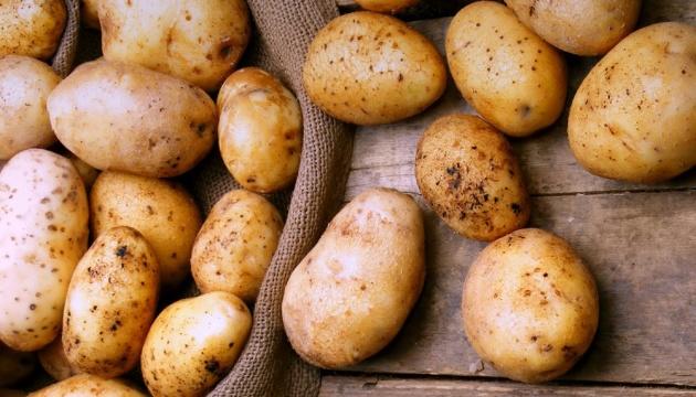 Темпи зростання цін на картоплю в Україні суттєво прискорилися - експерти
