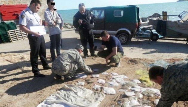 В Азовському морі браконьєри виловили риби на 260 тисяч гривень