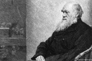 Из библиотеки Кембриджского университета исчезли записные книжки Дарвина