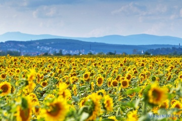 乌政府计划明年向农业生产者提供79亿格里财政支持