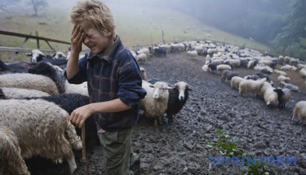 Один день из жизни закарпатских пастухов-сыроваров