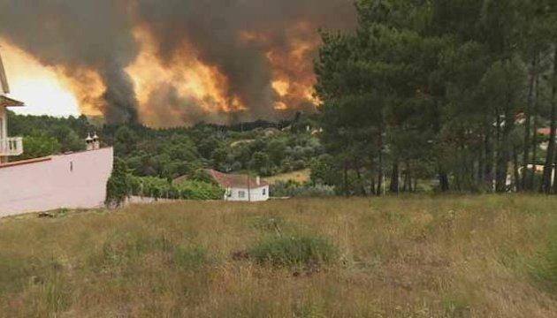 Лесные пожары в Португалии удалось взять под контроль