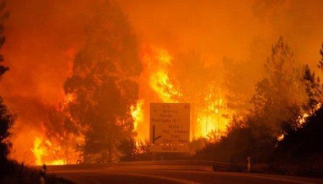 Від лісових пожеж у Португалії українці не постраждали - консул
