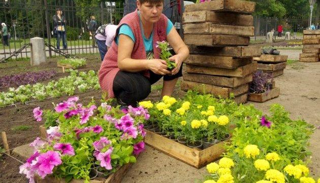 Киевлянам предлагают коммунальщикам подавать схемы на озеленение дворов