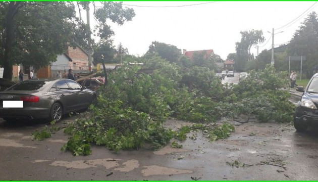 Bad weather leaves 143 towns and villages in Ukraine without electricity