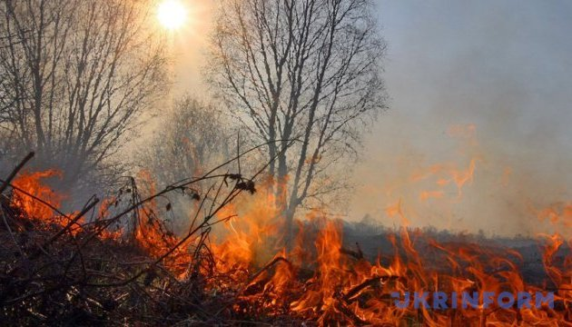 Ліс у Чорнобильській зоні сподіваються загасити до завтра