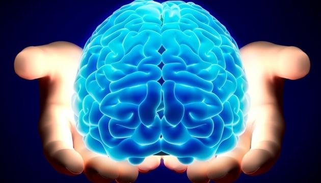 У США представили ще одного конкурента мозкового імпланта Ілона Маска