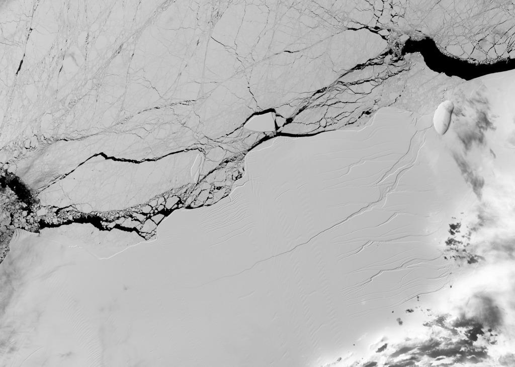 NASA/USGS Landsat