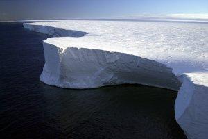 Квест для науковців: Куди рушить айсберг вагою у шість Еверестів?