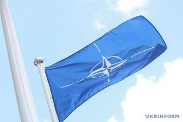 La OTAN acoge con satisfacción la liberación de marineros ucranianos y recuerda el MH17