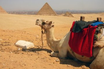 Foreign Ministry issues travel warning for Egypt
