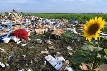 El Consejo Europeo insta a los países a cooperar plenamente con la investigación de la catástrofe del MH17