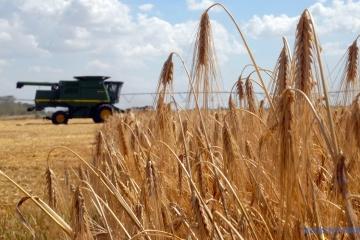 Ukraińscy rolnicy muszą przyspieszyć żniwa - eksperci
