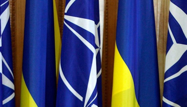 NATO PA President calls on Ukraine to fight against oligarchic influence