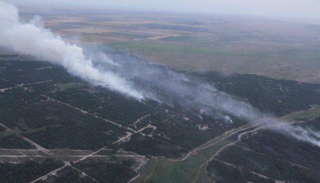 На Херсонщині загасили велику лісову пожежу