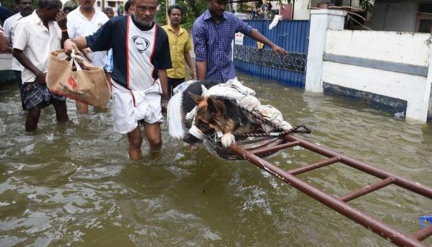 Повені в Індії: вже 91 загиблий, постраждалих понад 9 мільйонів