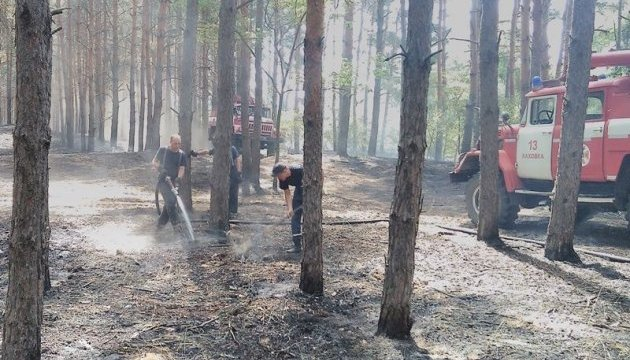 До гасіння лісової пожежі під Новою Каховкою долучили військових