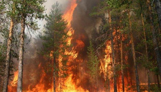 У Хорватії та Чорногорії вирують лісові пожежі, туристів евакуюють