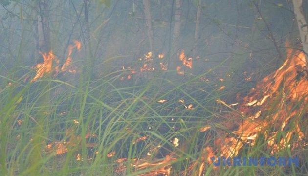Російські найманці навмисно підпалили поля й ліс на Донеччині - Генштаб