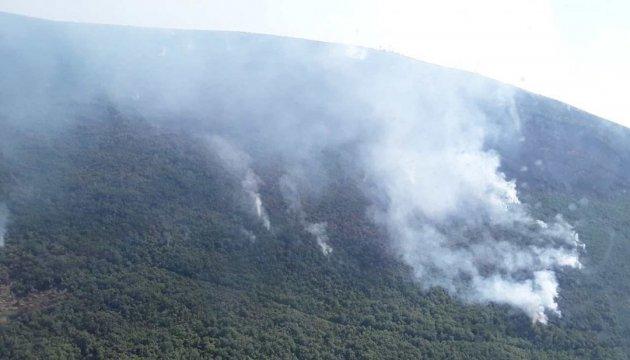 Украинские спасатели показали, как тушат пожар в Черногории