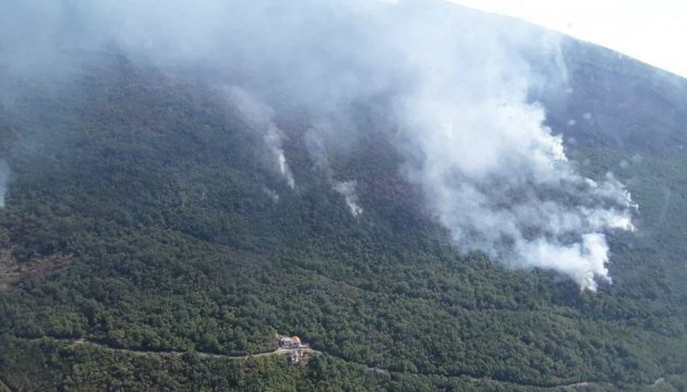 Ukrainian rescuers extinguishing fire in Montenegro
