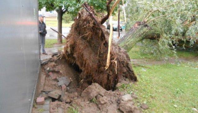 Польшей пронеслись сильные ураганы