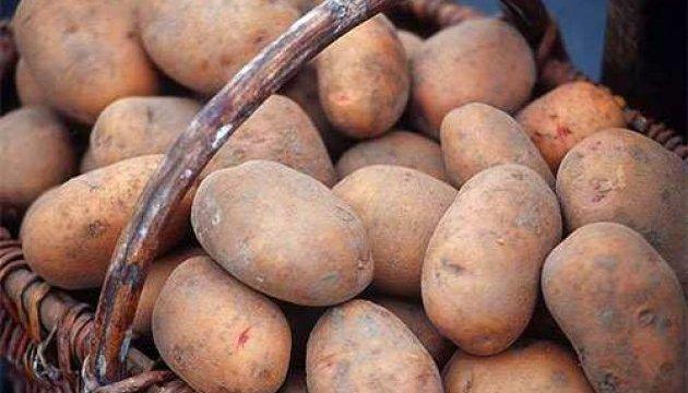 Belarus purchases 95% of Ukrainian potato exports
