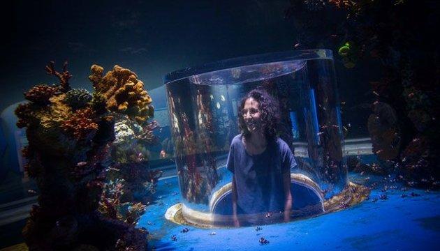 Израиль привлекает туристов уникальным океанариумом