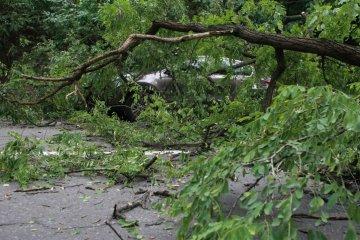 Un ouragan nocturne a ravagé la région de Lviv