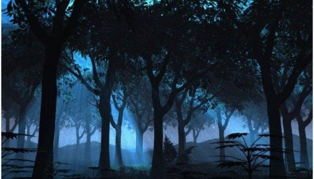На Волыни туристов зовут в ночной лес