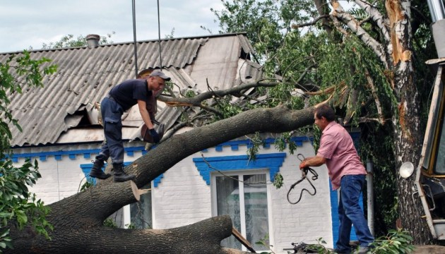 Bad weather leaves 131 Ukrainian towns and villages without electricity