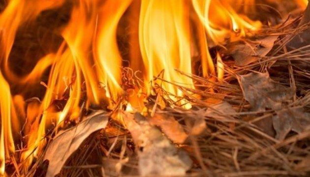 Рятувальники попереджають про пожежну небезпеку в Україні