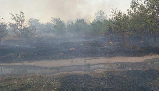 На Запоріжжі ліквідували пожежу у Крутоярівському лісництві