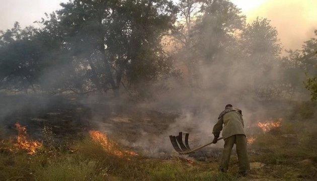 На Херсонщині гасять лісову пожежу площею 10 гектарів