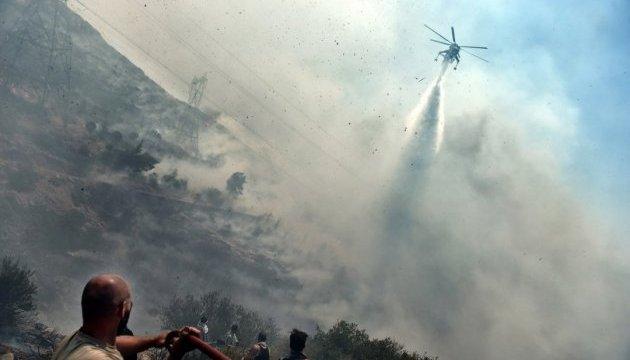 Греція просить ЄС про допомогу у боротьбі з лісовими пожежами