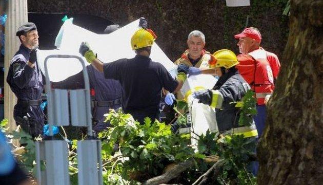 На Мадейрі у натовп паломників впало дерево: 12 загиблих