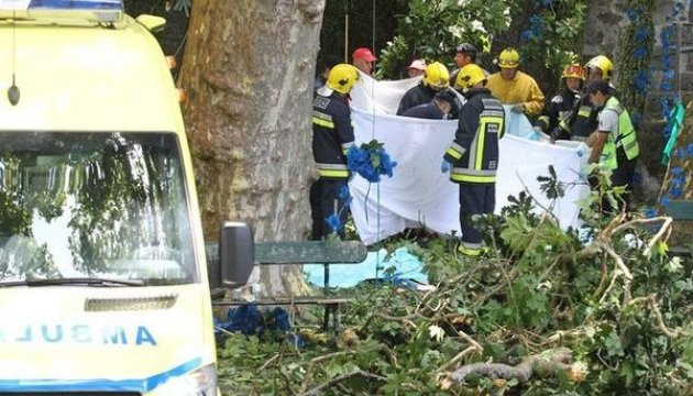 Кількість жертв падіння двохсотрічного дерева на Мадейрі зросла до 13