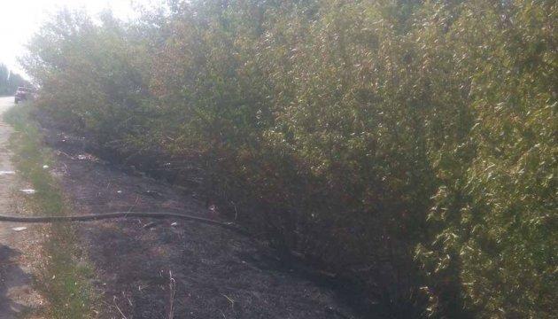 Частина Херсонського шосе задимлена через пожежу в лісосмузі