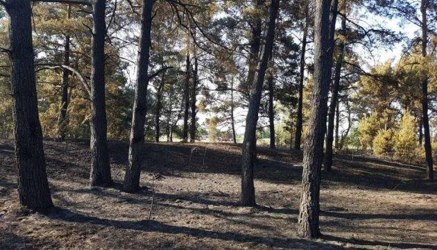 Лісову пожежу на Дніпропетровщині гасили понад добу