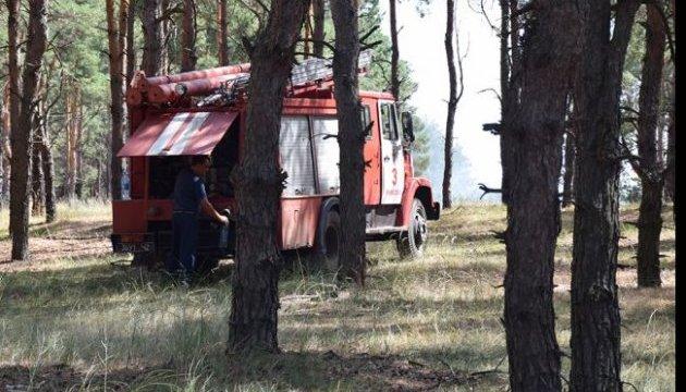 На Житомирщині досі гасять велику лісову пожежу