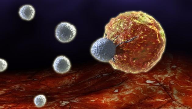 Раком обеспокоены больше половины населения Земли