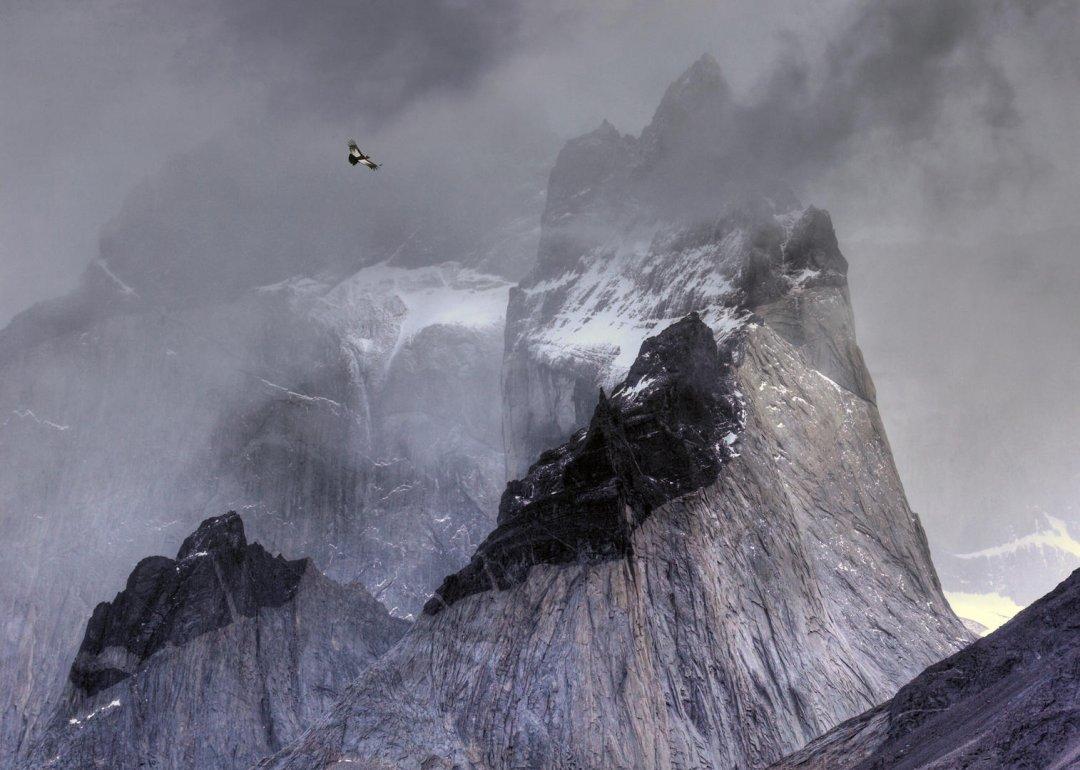 Condor over mountains by Ben Hall