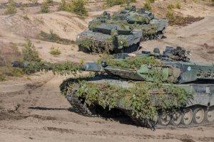 Финляндия и Швеция проведут крупнейшие военные учения сухопутных сил