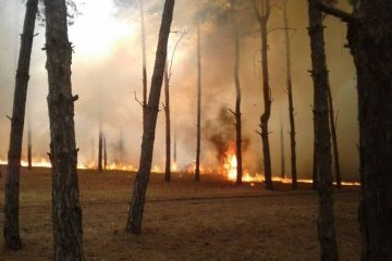 Extreme fire hazard expected in southern and eastern regions of Ukraine on Sept 12-15